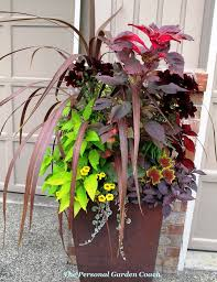 Plant Combination Ideas For Container Gardens 155 Best Pretty Pots Images On Pinterest Decks Garden Ideas And
