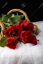 long stem red roses in wicker basket on white tulle fabric stock