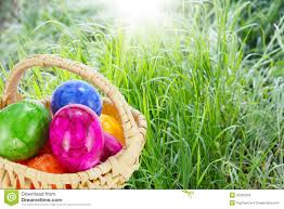 easter basket grass easter basket on grass royalty free stock photos image 35335018