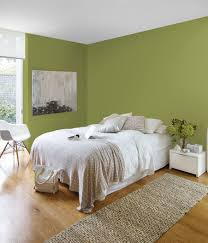 british paints asian lime green colour chart u0026 palette