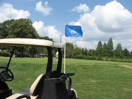 Golf Cart Flags Handicap Flags For Golf Carts Pictures To Pin On Pinterest Pinsdaddy