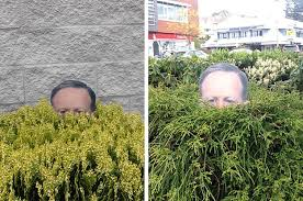 this actually made a spicer lawn ornament to display