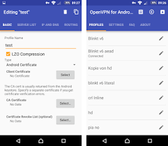 open vpn apk openvpn for android apk version 0 6 73 de blinkt