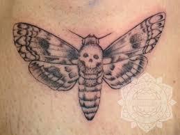 hawk moth by nebulatattoo on deviantart