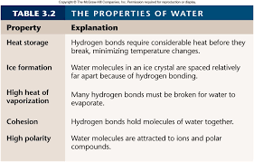 Water Properties Table Chemistry Of Life