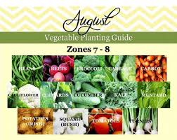 july vegetable planting guide southern planting calendar zone