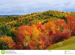 autumn hillside stock photo image 51756580