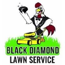Black Diamond Landscaping by Black Diamond Lawn Service Get Quote Landscaping Third Ward