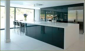 Gothic Kitchen Cabinets Contemporary Gloss Kitchen Cabinets U2013 Modern House