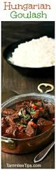best 25 goulash recipes ideas on pinterest goulash best ground