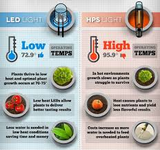 types of grow lights what are the main types of grow lights a beginner s guide
