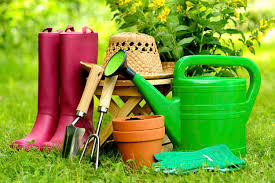 flower gardening made easy for a beginner to achieve a dream