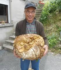 cuisiner vesse de loup une vesse de loup géante pour le retraité 30 06 2016 ladepeche fr