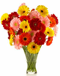 Flowers Irvine California - gift u0026 flower shop uc irvine health orange county ca