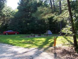 Delaware forest images Redden state forest georgetown delaware free campsites near you jpg