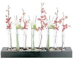 Test Tube Flower Vases Zen Garden Test Tube Vases Freshome Com