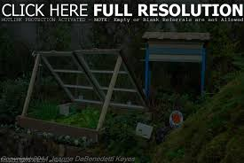 raised garden beds plans this old house ktactical decoration