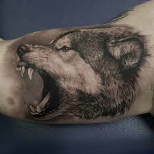 tattoo for biceps angry wolf tattoo on bicep animals tattoo pinterest angry