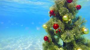 decorated christmas tree shining in sunlight under water stock