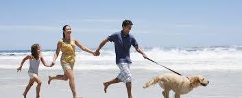 outer banks pet friendly rentals shoreline obx