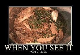 Crickets Meme - for me it s crickets those little demons here s the jerusalem