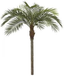 artificial coconut palms 11 coconut palm tree w metal plate