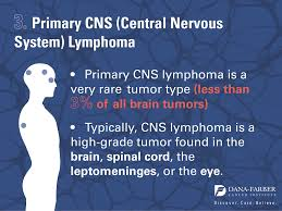 what are the most common brain tumors insight