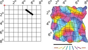 Map Python Frontiers Topographica Building And Analyzing Map Level