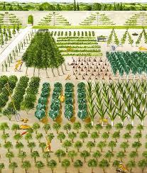 42 best edible formal garden spaces images on pinterest veggie