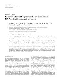 interactive effects of morphine on hiv infection role in hiv
