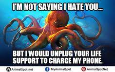 Octopus Meme - octopus memes photos different types of funny animal memes