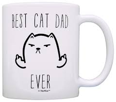 Cat Lover Meme - com funny cat gifts best cat dad ever rude cat lovers cat