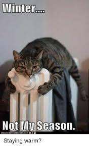 Memes About Winter - winter not my season staying warm meme on me me