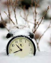 winter opening times carnon downs garden centre