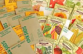 seed packets bulk seeds select organic buy heirloom vegetable herb flower