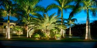outdoor landscape lighting kits home design ideas and pictures