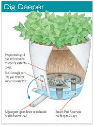 Self Watering Planter by Waterease Self Watering Planter Gardeners Com