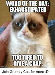 Too Tired Meme - word of the day exhaustipated too tired to giveacrap imegflipcom