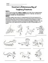 dichotomous key worksheets free worksheets library download and