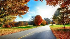 download scenery wallpaper hd download gallery