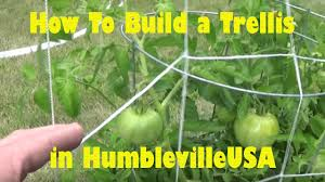 how to build a trellis to aid vertical gardening square foot