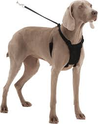 guide dog harness sporn non pull mesh dog harness black large x large chewy com