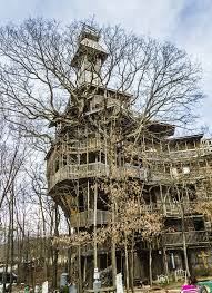 in crossville tn the world s tree house enpundit