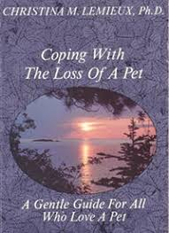 the loss of a pet losing a pet experience