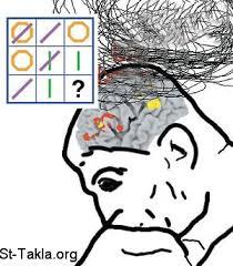 كثيرا ما يخطئ العقل