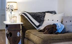 Dog Sofa Cover by 5 Best Dog Couch Covers Protect Your Sofa From Your Pup U0027s Paws