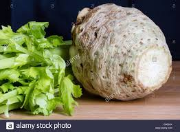 Celery Root Vegetable - fresh celery root stock photo royalty free image 103264082 alamy