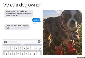 Dog Owner Meme - this is me dogs are better than people pinterest dog