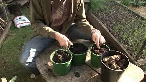 Garden Soil Types How To Identify Your Soil Type Youtube
