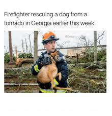Georgia Meme - firefighter rescuing a dog from a tornado in georgia earlier this